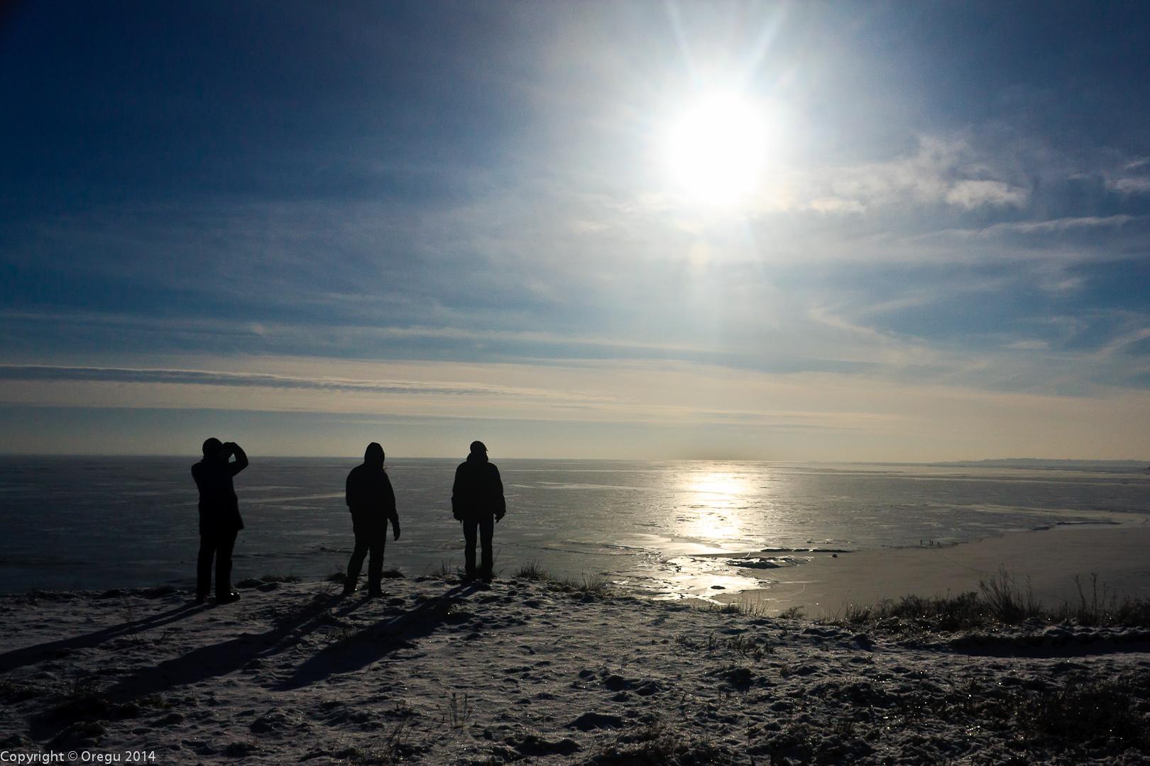 Земёрзшее Азовское море. Январь 2014